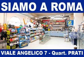 Acquista direttamente a Roma in negozio